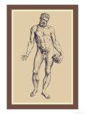 Man Kunstdrucke von Andreas Vesalius