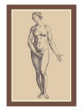 Woman Poster von Andreas Vesalius
