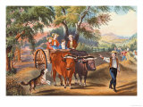 Haying Time Plakater av Currier & Ives,