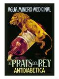 Agua Minero Medicinal de Prats del Rey 高品質プリント