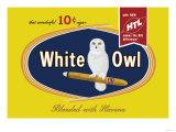 White Owl Cigars Premium Giclee-trykk