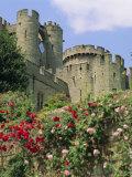 Warwick Castle, Warwick, Warwickshire, England, UK, Europe Photographic Print by G Richardson