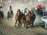 Chuck Wagon Race, Calgary Stampede, Alberta, Canada Photographic Print by Paolo Koch