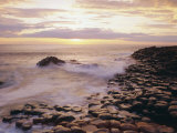 The Giant's Causeway, County Antrim, Ulster, Northern Ireland, UK, Europe Fotografisk tryk af Roy Rainford