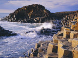 The Giant's Causeway, Co Antrim, Northern Ireland Fotografisk tryk af Roy Rainford