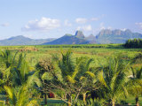 Mauritius, Scenic in the North West Region of the Island Fotografisk tryk af Fraser Hall