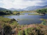 Upper Lake and Macgillycuddy's Reeks, Ring of Kerry, Killarney, Munster, Republic of Ireland (Eire) Photographic Print by Roy Rainford
