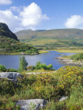 Ring of Kerry Between Upper Lake and Muckross Lake, Munster, Republic of Ireland (Eire) Fotografisk tryk af Roy Rainford