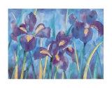 Irises Prints by Lisa V. Keaney