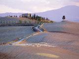 Landscape Near Pienza, Siena Province, Tuscany, Italy Photographic Print by Bruno Morandi
