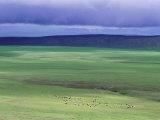 Ovorkhangai Province, Mongolia, Asia Photographic Print by Bruno Morandi