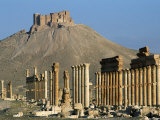 Grand Colonnade and the Arab Castle, Palmyra, Unesco World Heritage Site, Syria, Middle East Photographic Print by Bruno Morandi