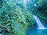Waterfall, Guadeloupe, French Antilles, Caribbean Reproduction photographique par J P De Manne
