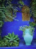 Majorelle Gardens, Marrakesh, Morocco, North Africa Fotografisk tryk af Bruno Morandi