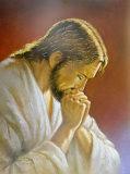 Christ Praying Plakater