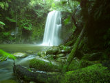 Beauchamp Fall, Waterfall in the Rainforest, Otway N.P., Great Ocean Road, Victoria, Australia Photographic Print by Thorsten Milse