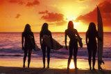 Surf et coucher de soleil Posters