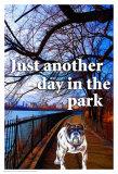 Just Another Day Poster af Marilu Windvand