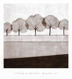 Mirage VII Prints by Steven N. Meyers