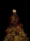 Christmas Tree at Night Fotografisk tryk af John Burcham