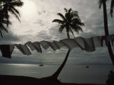 Buca Bay, Laundry and Palm Trees Stretched Canvas Print by James L. Stanfield
