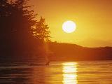 Distant Killer Whale is Seen in the Light of a Setting Sun Impressão fotográfica por Bill Curtsinger