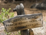 Sign on Pacific Crest Trail to Monache Meadows, Inyo National Forest, California Fotografisk tryk af Rich Reid