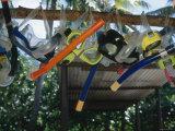 Snorkeling Equipment Hanging from Tree Branch Fotografie-Druck von James Forte