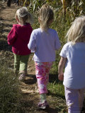 Siblings Walk Through a Corn Maze Lámina fotográfica por Gold, Stacy