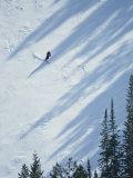 Skier Glides Across a Pine-Shadowed Slope at Deer Valley Resort, Utah Reproduction photographique par James P. Blair