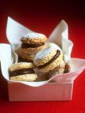 Hazelnut Chocolate Biscuits Valokuvavedos tekijänä Michael Paul