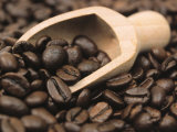 Coffee Beans in a Scoop Photographic Print by Steven Morris