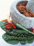 Curry Paste in a Mortar and Assorted Spices Fotografie-Druck von Peter Medilek