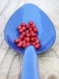 Pink Pepper in Blue Spoon Fotografie-Druck von Frank Tschakert