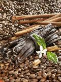 Coffee Beans, Vanilla Pods and Cinnamon Sticks Fotografie-Druck von Karl Newedel
