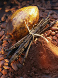 Still Life with Cocoa and Vanilla Pods Fotografisk tryk af Marc O. Finley
