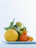 Still Life with Citrus Fruits Lámina fotográfica por Armin Zogbaum