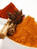 Various Spices Fotografie-Druck