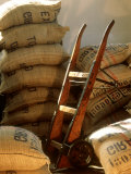 Coffee Beans in Burlap Bags in Warehouse Photographic Print