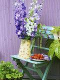 Garden Chair with Delphiniums and Plate of Strawberries Fotografie-Druck von Linda Burgess