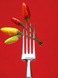 Four Chili Peppers on a Fork Fotografisk tryk af Marc O. Finley