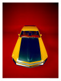 1969 Ford Mustang Boss 302 Giclee Print