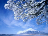Mt. Fuji & Lake Yamanaka, Yamanashi, Japan Fotoprint