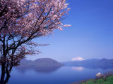 Cherry Blossoms and Lake Toyah Fotografie-Druck