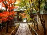 Koetsuji Temple in Autumn Fotoprint