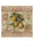 Zitronen aus Neapel Poster von Thomas L. Cathey