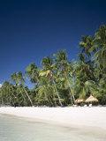 Boracay Beach, Palm Trees and Sand, Boracay Island, Philippines Reproduction photographique par Steve Vidler