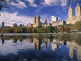 Central Park, New York City, Ny, USA Fotografisk tryk af Walter Bibikow