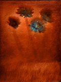 Four Blue Flowers in Copper Grass Photographic Print by Robert Cattan