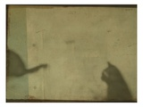 Blurred Cats Sitting Photographic Print by Mia Friedrich